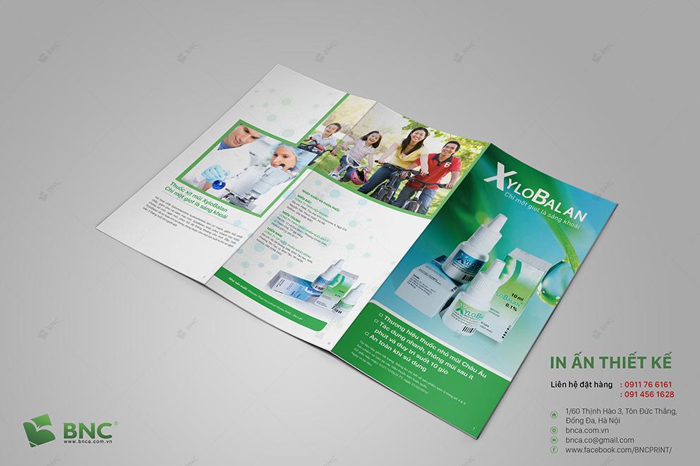 thiết kế và in brochure